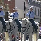 police greys by dennis wingard