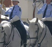 police greys Sticker