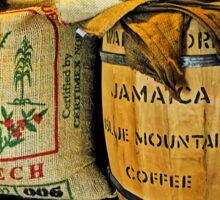 Still Life at Yahava KoffeeWorks Sticker
