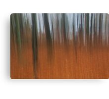 tollohill woods abstract Canvas Print