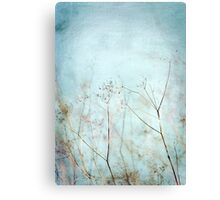 Blue sky scrubs Canvas Print