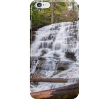 Moses Falls iPhone Case/Skin
