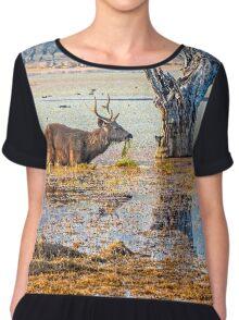 Antelope in the water Women's Chiffon Top