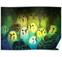 Bird Pile Poster