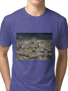 Bird Tri-blend T-Shirt