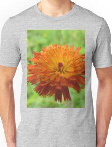 Orange danger Unisex T-Shirt