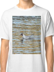 A seagull looking for fish Classic T-Shirt
