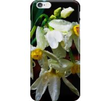 Weeping Narcissus iPhone Case/Skin