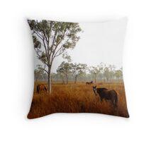Gibb River Road Horses - Western Australia Throw Pillow