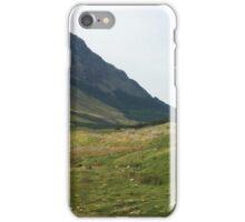 Cattle at Black Sail Hut, Ennerdale, Cumbria, UK iPhone Case/Skin
