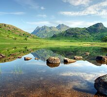 Blea Tarn in July by Jamie  Green
