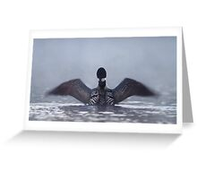 Blur - Common loon Greeting Card