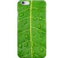 Dew - Karratha, Western Australia iPhone Case/Skin