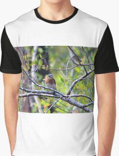 Eastern Bluebird Graphic T-Shirt