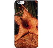 Sensuality & Decay iPhone Case/Skin