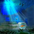 Fish Bowl by Igor Zenin