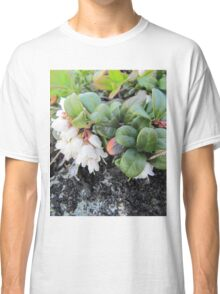 White small lingonberries flowers Classic T-Shirt