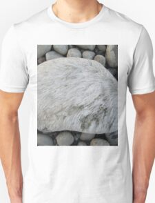 white moss on the stone where there is nothing Unisex T-Shirt