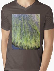 Green moss on the stone where there was nothing Mens V-Neck T-Shirt