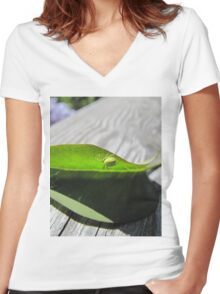 Green spider on a leaf Women's Fitted V-Neck T-Shirt