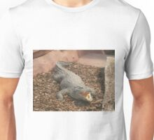 Crocodile Animals Reptiles Unisex T-Shirt
