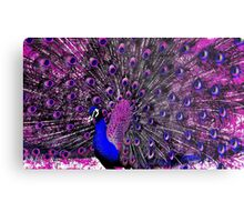 Surreal Peacock Metal Print