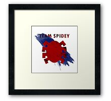 Team Spidey Framed Print