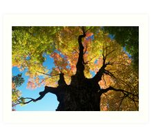 Tree of Awesome Art Print