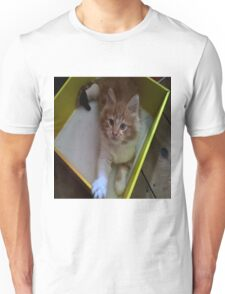 gizmo chilling in a box design Unisex T-Shirt