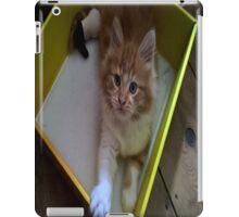 gizmo chilling in a box design iPad Case/Skin