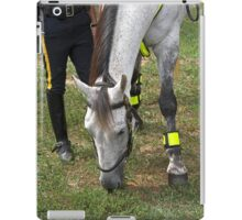 Police horse iPad Case/Skin