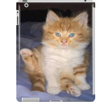baby gizmo  kitten cleaning iPad Case/Skin