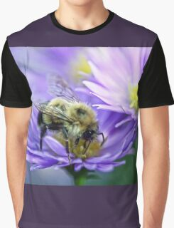 Bumble Bee - Fall Aster Graphic T-Shirt