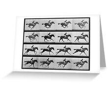 Muybridge Horse Photographic Horse Motion Study Greeting Card