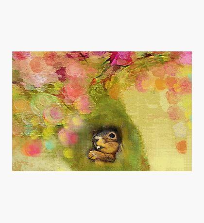 Treehouse Photographic Print