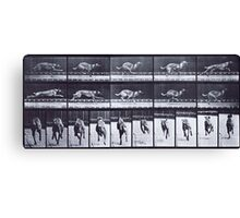 Muybridge - Photographic Study of Dogs in Motion Canvas Print