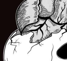 The Head & The Heart Sticker