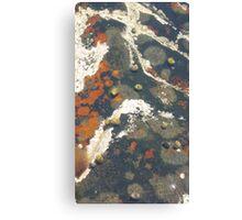 Tidal Periwinkles Canvas Print