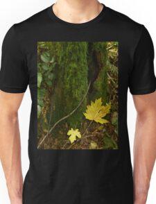 Autumn in the Rain Forest Unisex T-Shirt