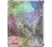 Multi Coloured Abstract Painting iPad Case/Skin