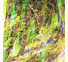 Abstract VIII Photographic Print