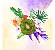 Blooming Kiwi Photographic Print