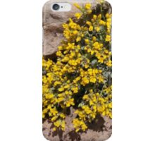 Spring Heart iPhone Case/Skin