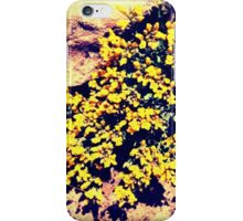 Spring Heart II iPhone Case/Skin
