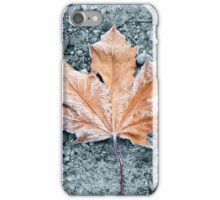 Frosted Maple Leaf  iPhone Case/Skin
