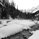 Snowy stream (b&w) by zumi