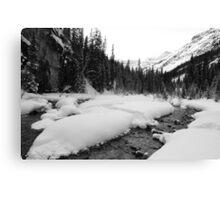 Snowy stream (b&w) Canvas Print