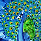 Wild and Free- Peacock by cathyjacobs