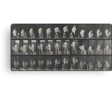 Eadweard Muybridge - Photographic Motion Study Canvas Print