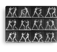 Eadweard Muybridge - Fight Boxer Motion Study Canvas Print